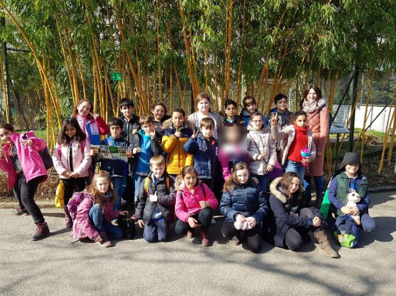 Zoo_Lemuren-04